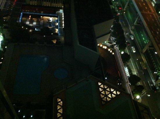 Ana Intercontinental Tokyo: Gece otelden bahçe ve havuz görünümü
