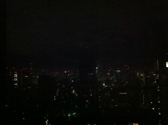 Ana Intercontinental Tokyo: Gece otelden Tokyo görünümü