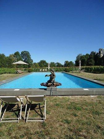 Chateau de Labro : La piscine au milieu des Vignes