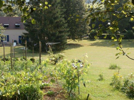 La Parisienne des Amognes: Dans le jardin
