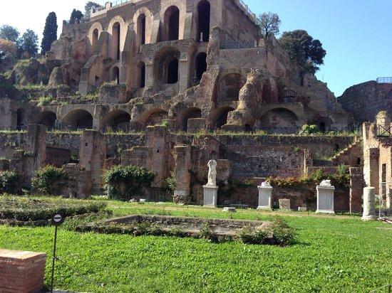 Real Rome Tours: Roman Ruins