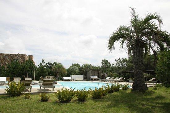 Casa Suaya : Pool area
