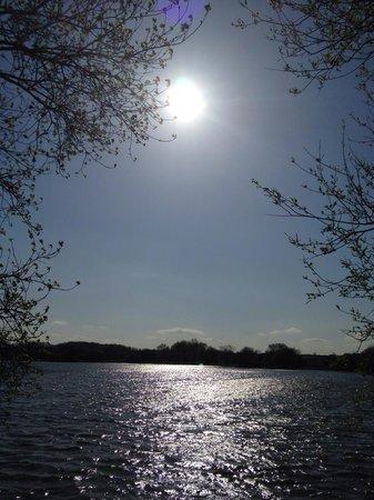 Watermead Park : Beautiful sunny day