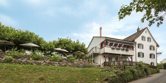 Restaurant zum Pflugstein: Restaurant mit Garten