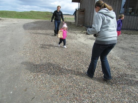 Crosswoodhill Farm Holiday Cottages Near Edinburgh: Egg Hunt
