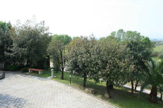 Poggio degli Olivi: Il giardino