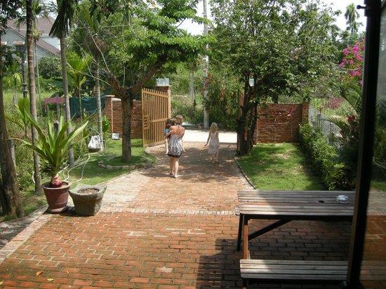 Jackfruit Homestay: Front garden