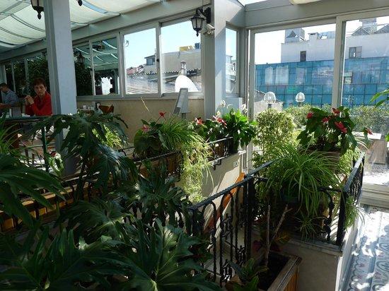 Hotel Niles Istanbul : Inside terrace