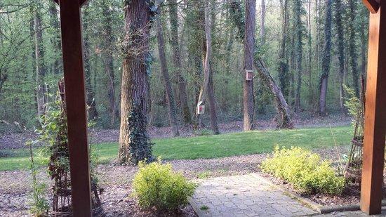 Hôtel La Maison d'Hôtes : les bois