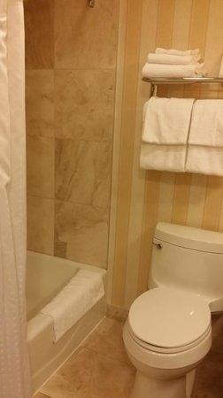 Holiday Inn Montreal Longueuil : Basic bathroom