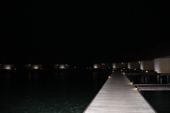 Ellaidhoo Maldives by Cinnamon: night view of water banglows