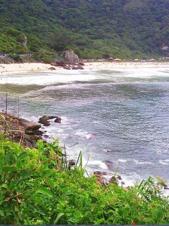 Atlantico Sul Hotel: Reserva biologica Grumari
