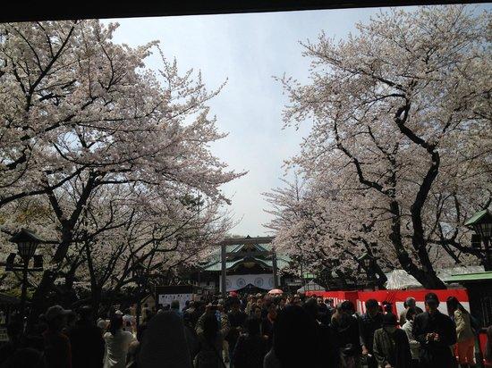 Yasukuni Shrine: 靖国