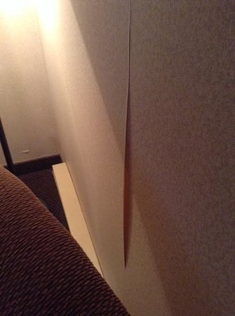 Clarion Resort Pinewood Park : peeling wallpaper at several areas in the room