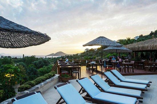 4reasons hotel+bistro : Bistro overlooking the islands