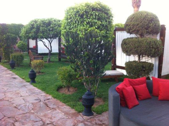 Sofitel Marrakech Lounge and Spa: Jardin avec lits