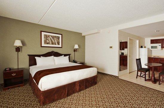 D. Hotel & Suites: Suite