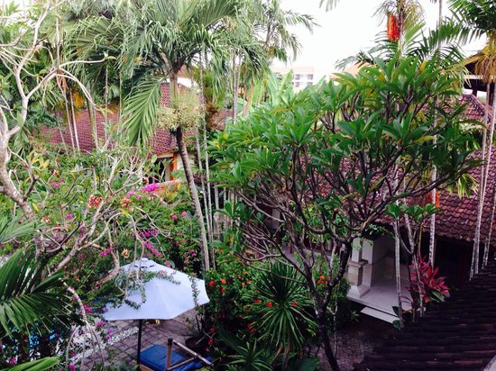 Bumi Ayu Bungalows : Trees 'bushing' out the entrance of each room thus provides privacy to occupants