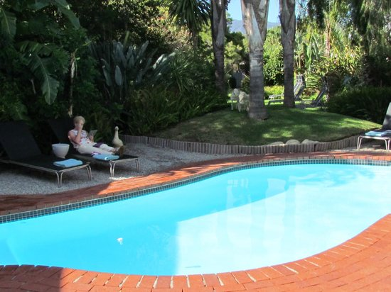 Ballinderry, The Robertson Guest House: Pool and gardens (wife optional!)