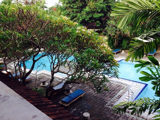 Bumi Ayu Bungalows: The pool: from my room