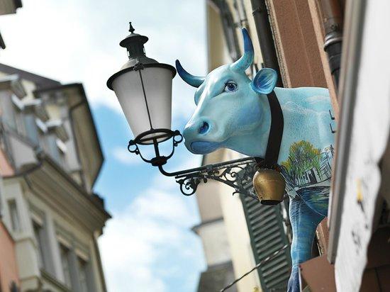 Hotel Adler Zurich : Unsere Kuh - Heidi, das meist fotografierte Sujet der Altstadt