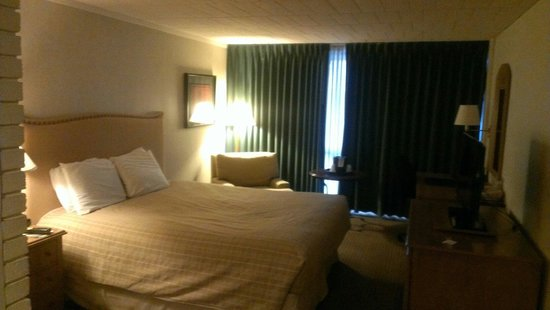 Millennium Buffalo: King size room