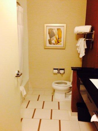 Fairfield Inn & Suites Montgomery Airport South : Nice big clean bathroom