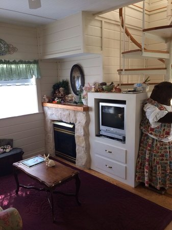 Corner Cottage B&B: Fireplace & media