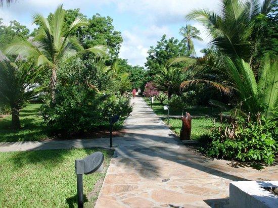 Uroa Bay Beach Resort : Petite allée ensoleillée