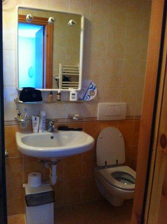 Alpen Village Hotel: Ванная