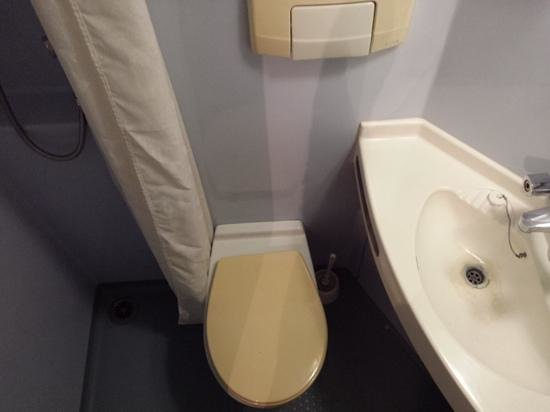 Windsor House Hotel : the very small bathroom