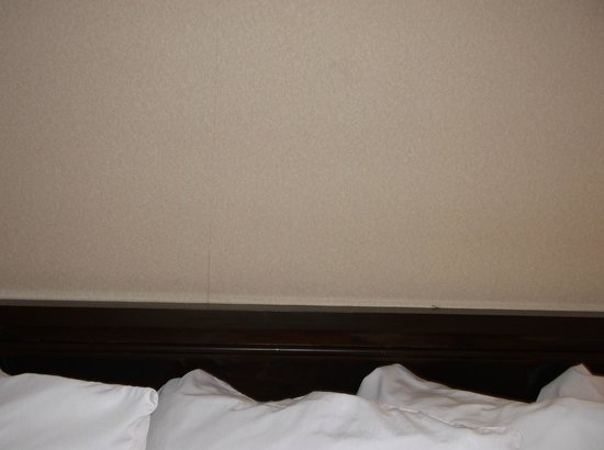 Quality Inn & Suites -- South San Francisco: Needs to be repainted