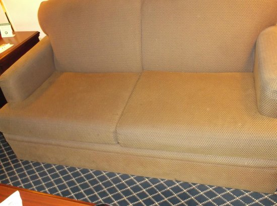 Quality Inn & Suites -- South San Francisco: Stained sofa