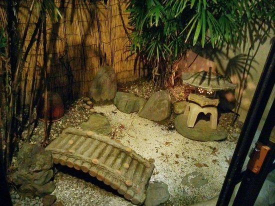Hostel Ann: small garden