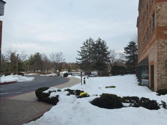 Embassy Suites by Hilton Philadelphia-Valley Forge : Snowy day