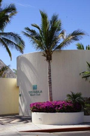 CostaBaja Resort & Spa : Beachclub