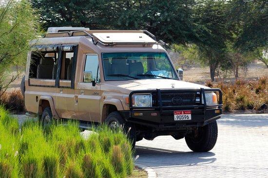 Anantara Sir Bani Yas Island Al Sahel Villa Resort: Park's nature drive cars