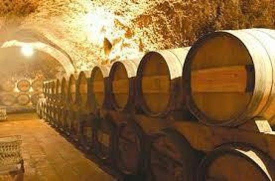 Rioja Tours Ltd