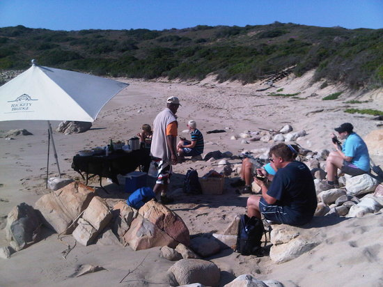 Sandpiper Guest Cottages and The Oystercatcher Trail: OCT beach lunch