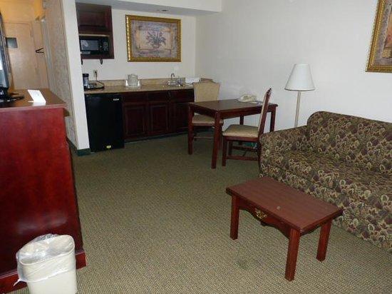 Holiday Inn Express Hotel & Suites Huntsville-University Drive: Living Area