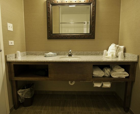 Holiday Inn Buffalo International Airport: Vanity