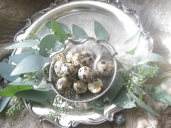 Lyttleton Inn: quail eggs