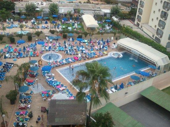 Presidente Hotel: pisci