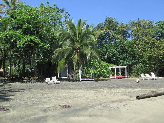 Le Cameleon Boutique Hotel : Camas de playa del hotel.