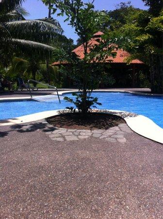 Laguna Lodge Tortuguero : Pool
