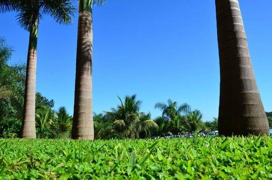 Amerian Portal del Iguazu: Jardin