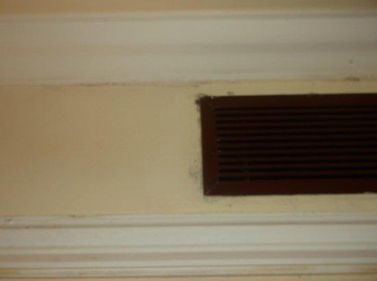Hotel Riu Palace Punta Cana : Dirty and moldy air vent
