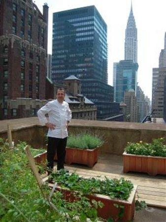Barclay Hotel New York Tripadvisor