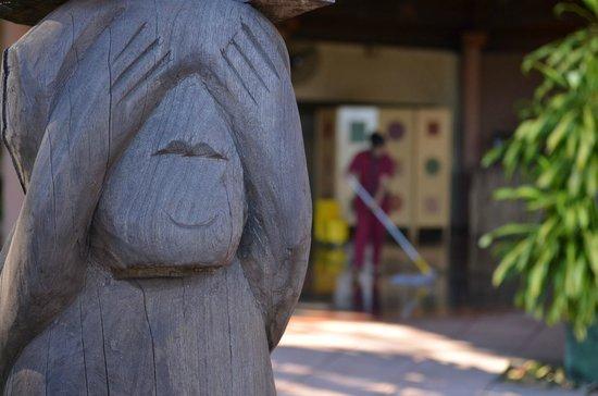 Amerian Portal del Iguazu: Sr. Mono