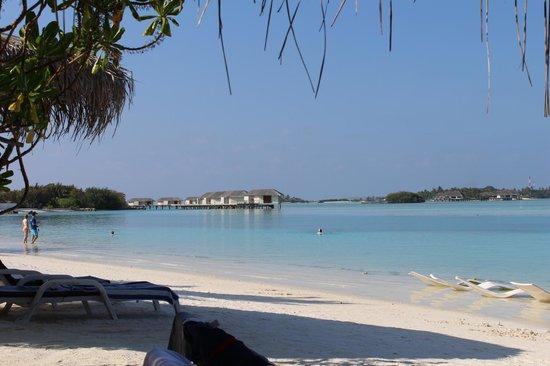 Cinnamon Dhonveli Maldives: Bucht